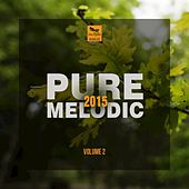 Play & Download Pure Melodic 2015, Vol.2 by Various Artists | Napster