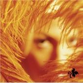 Shangri-La Dee Da by Stone Temple Pilots