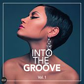 Into The Groove - Fantastic Deep House Cuts, Vol. 1 by Various Artists