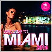 Play & Download Welcome to Miami 2016 by Various Artists | Napster