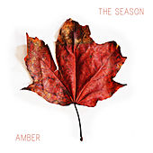 Play & Download The Season by Amber | Napster