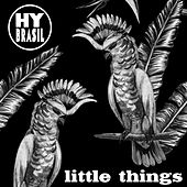 Play & Download Little Things - Single by Hybrasil | Napster