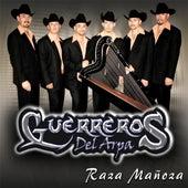 Raza Manoza by Guerreros Del Arpa