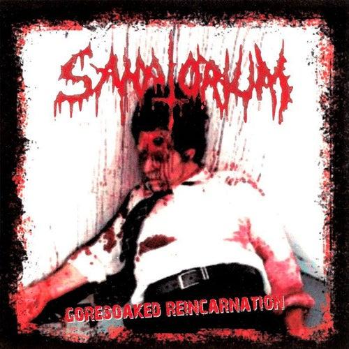 Goresoaked Reincarnation by Sanatorium