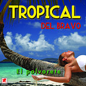 Play & Download El Polvorete by Tropical Del Bravo | Napster