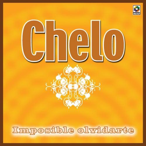 Imposible Olvidarte by Chelo