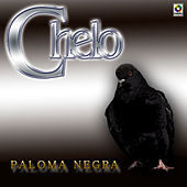 Play & Download Paloma Negra by Chelo | Napster