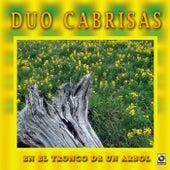 En El Tronco De Un Arbol by Duo Cabrisas