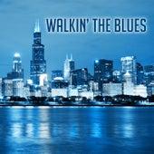 Walkin' the Blues von Various Artists