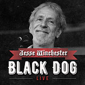 Play & Download Black Dog by Jesse Winchester | Napster