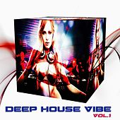 Deep House Vibe, Vol. 1 (50 Best House Tracks) by Various Artists