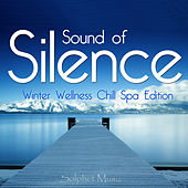 Play & Download Silence - Sound of Winter Wellness Chill Spa Edition by Various Artists | Napster