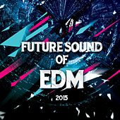 Play & Download Future Sound Of EDM by Various Artists | Napster