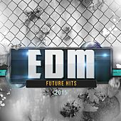 EDM Future Hits 2015 by Various Artists