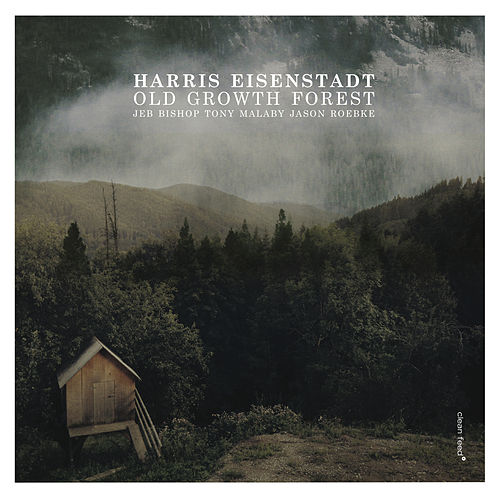 Play & Download Old Growth Forest by Harris Eisenstadt | Napster