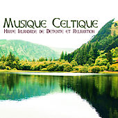 Musique Celtique - Harpe Irlandaise de Détente et Relaxation by Celtic Harp Soundscapes
