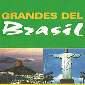 Play & Download Grandes del Brasil by Various Artists | Napster