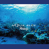Play & Download Aqua Blue by Shinji Ishihara | Napster