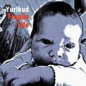 Play & Download Fragile Life by Yurikud | Napster