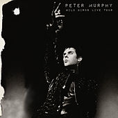 Wild Birds Live Tour by Peter Murphy