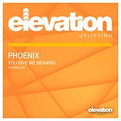 You Give Me Meaning by Phoenix