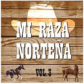 Mi Raza Norteña, Vol. 3 by Various Artists