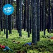 Play & Download Verlass Die Stadt by Gustav | Napster