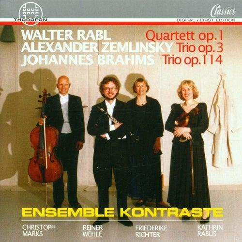 Rabl, Zemlinsky, Brahms by Ensemble Kontraste