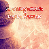 Play & Download Autogenes Training & Meditationsmusik: Entspannungmusik und Gesunder Schlaf, Tiefentspannungsmusik, Regeneration, Erholung & Wellness by Asian Traditional Music | Napster