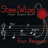 Four Reasons by Steelwind