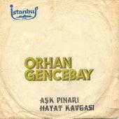 Aşk Pınarı / Hayat Kavgası (45'lik) by Orhan Gencebay