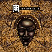 Play & Download Transient Life by B12   Napster