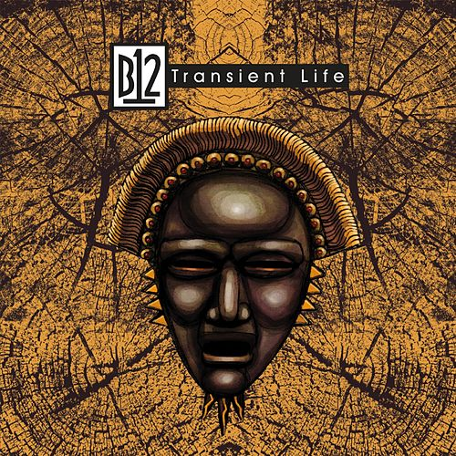 Transient Life by B12
