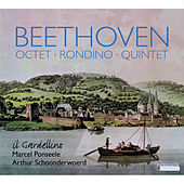 Beethoven: Octet, Rondino and Quintet for Winds by Various Artists