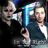 In the Night (feat. Kandy Ho) by Adam Barta