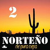 Norteño de Pura Cepa, Vol. 2 by Various Artists