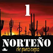 Norteño de Pura Cepa, Vol. 1 by Various Artists