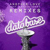Play & Download Another Love (feat. Savoir Adore) [Remixes] by Database | Napster