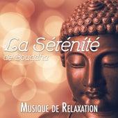 La Sérénité de Bouddha - Musique de Relaxation, de Film, Classique pour s'Endormir et Trouver la Paix Intérieure by Various Artists