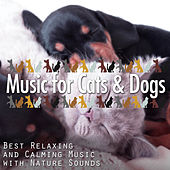 Play & Download Music for Cats & Dogs: Best Relaxing and Calming Music with Nature Sounds by Various Artists | Napster