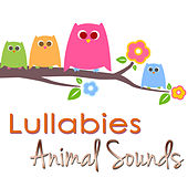 Play & Download Lullabies, Animal Sounds – Peaceful Songs with Nature Sounds by Rainforest Music Lullabies Ensemble | Napster