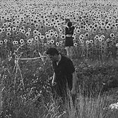 Play & Download Jesu/Sun Kil Moon by Jesu/Sun Kil Moon | Napster