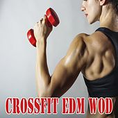 Play & Download Workout - 30 Min = Danyal 1e Helft Van Zijn Mix Crossfit EDM Wod & DJ Mix by Various Artists | Napster