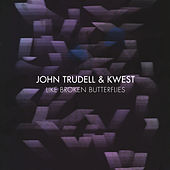 Like Broken Butterflies by John Trudell