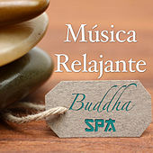 Play & Download Spa Buddha: Música Relajante para una Terapia de Relajación de Spa y Salon de Belleza para Tu Paz Interior by Various Artists | Napster