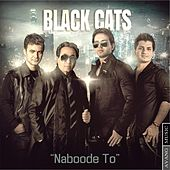 Play & Download Naboode To by Black Cats | Napster