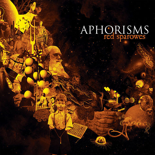 Aphorisms by Red Sparowes