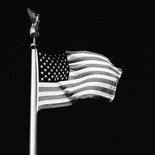 The Flag by Brandon Jenkins