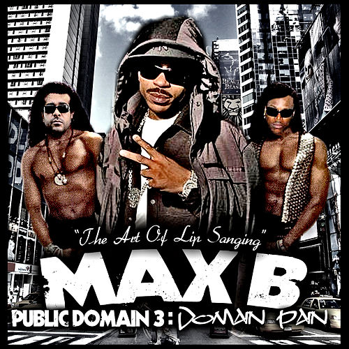Public Domain 3: Domain Pain by Max B.
