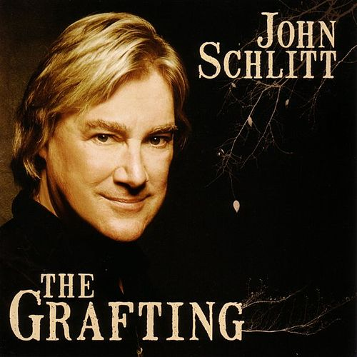 Play & Download The Grafting by John Schlitt | Napster